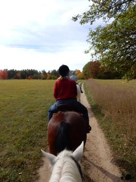 horseride1