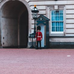 royal-guard-standing-beside-building-1560101